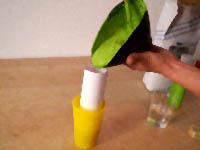 leckere limonade ganz einfach selbst gemacht. Black Bedroom Furniture Sets. Home Design Ideas