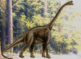 Dinosaurier Teil 3 Die Dinosaurier Des Jura Zeitalters