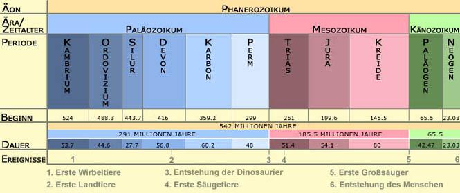 Evolution: Evolutionstheorie von Charles Darwin und Entwicklung der ...