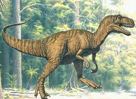 Senckenberg Museum Auf Den Spuren Der Dinosaurier